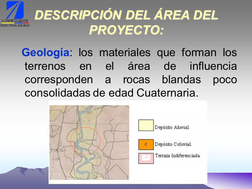 DESCRIPCIÓN DEL ÁREA DEL PROYECTO:
