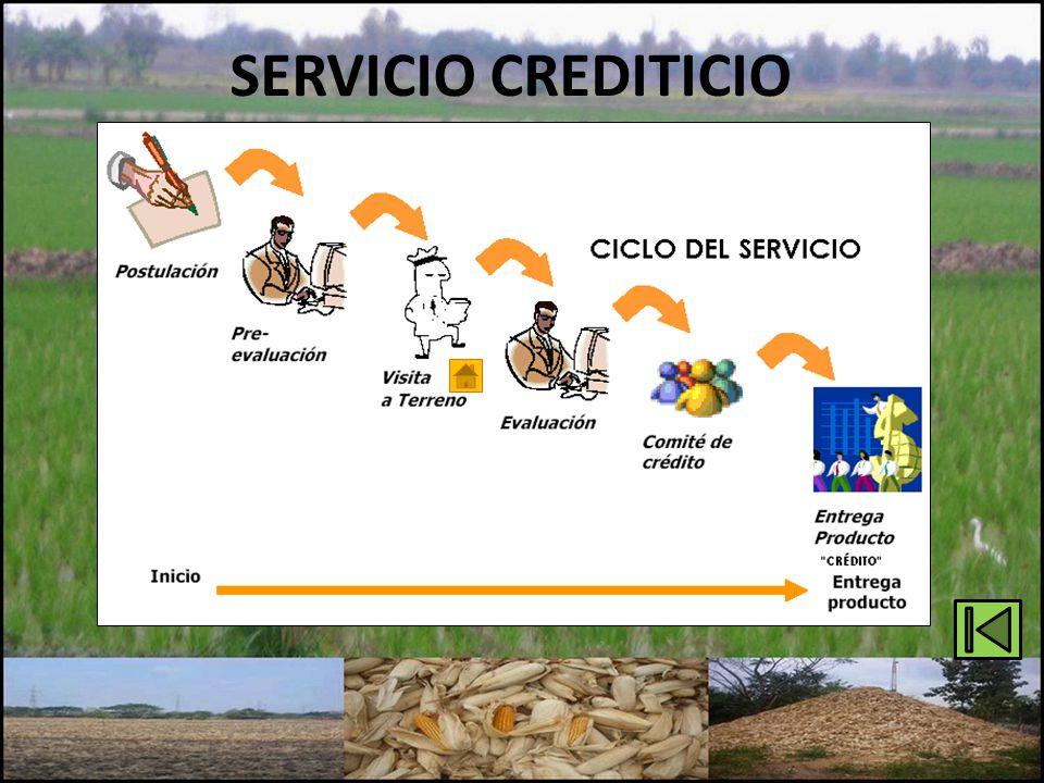 SERVICIO CREDITICIO