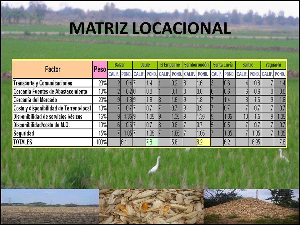 MATRIZ LOCACIONAL