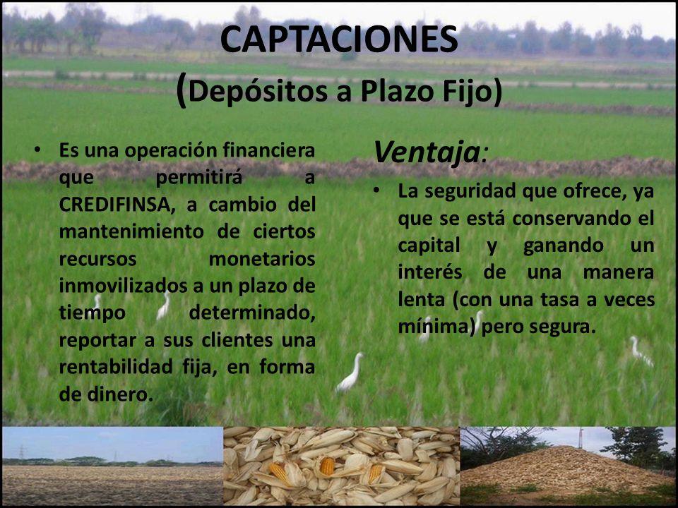 CAPTACIONES (Depósitos a Plazo Fijo)
