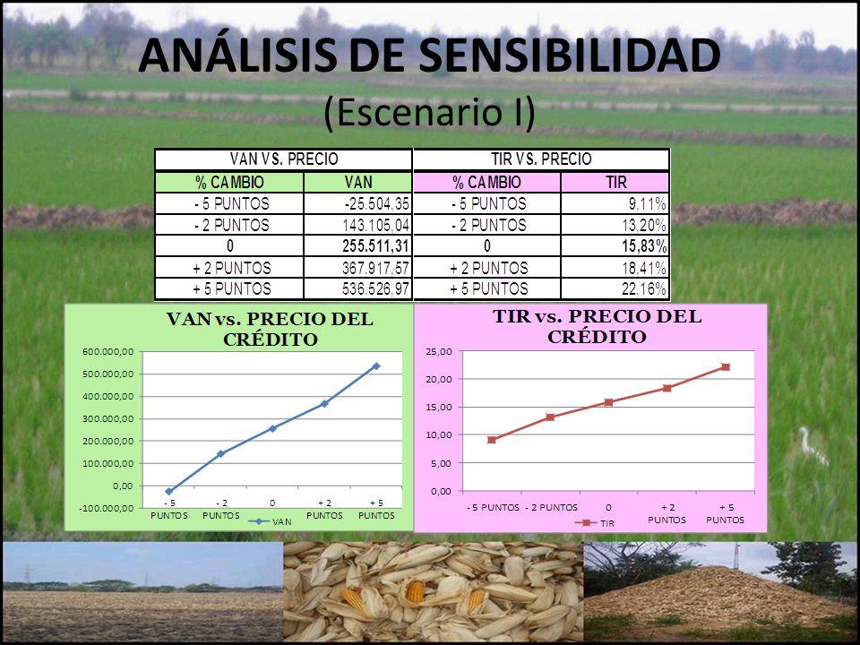 ANÁLISIS DE SENSIBILIDAD (Escenario I)