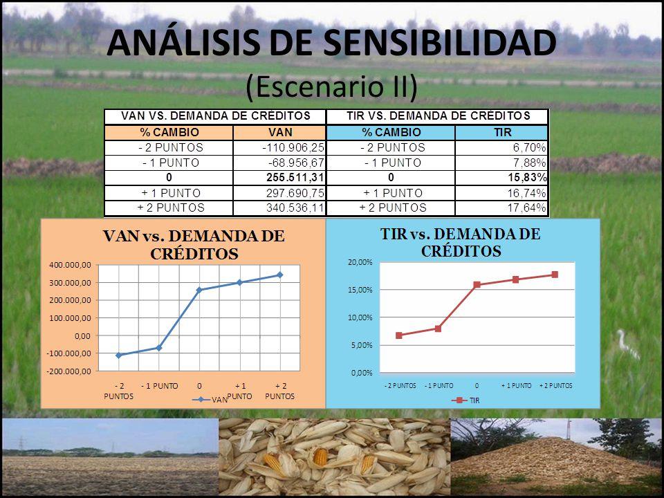 ANÁLISIS DE SENSIBILIDAD (Escenario II)