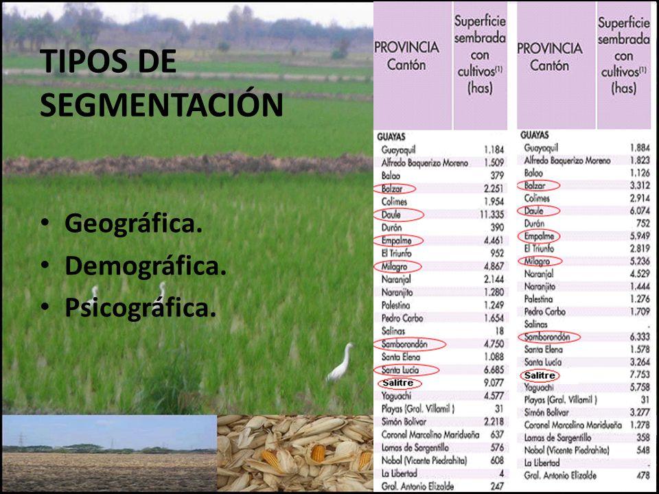 TIPOS DE SEGMENTACIÓN Geográfica. Demográfica. Psicográfica.