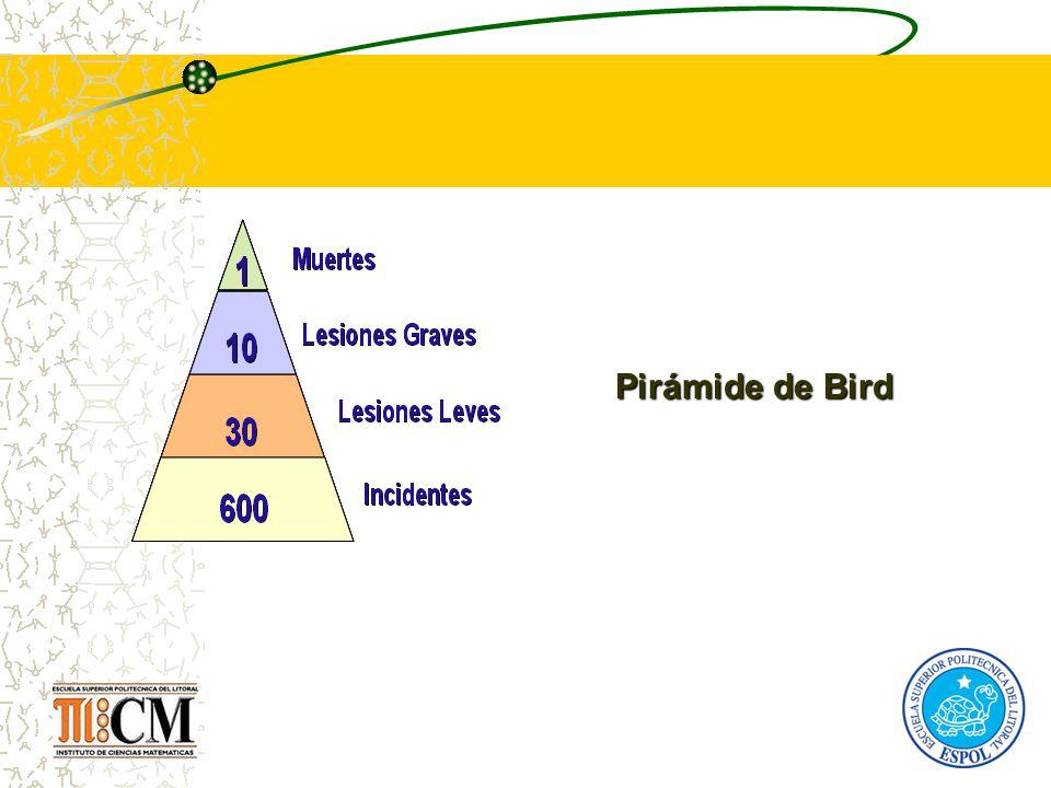 Pirámide de Bird 22