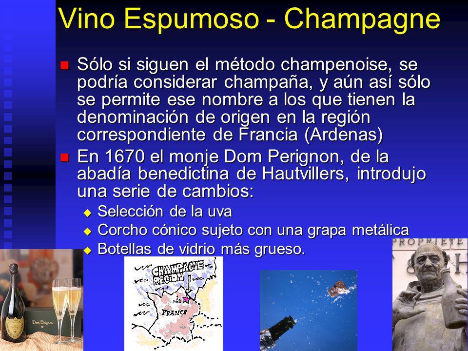 Vino Espumoso - Champagne