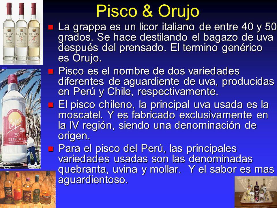Pisco & Orujo