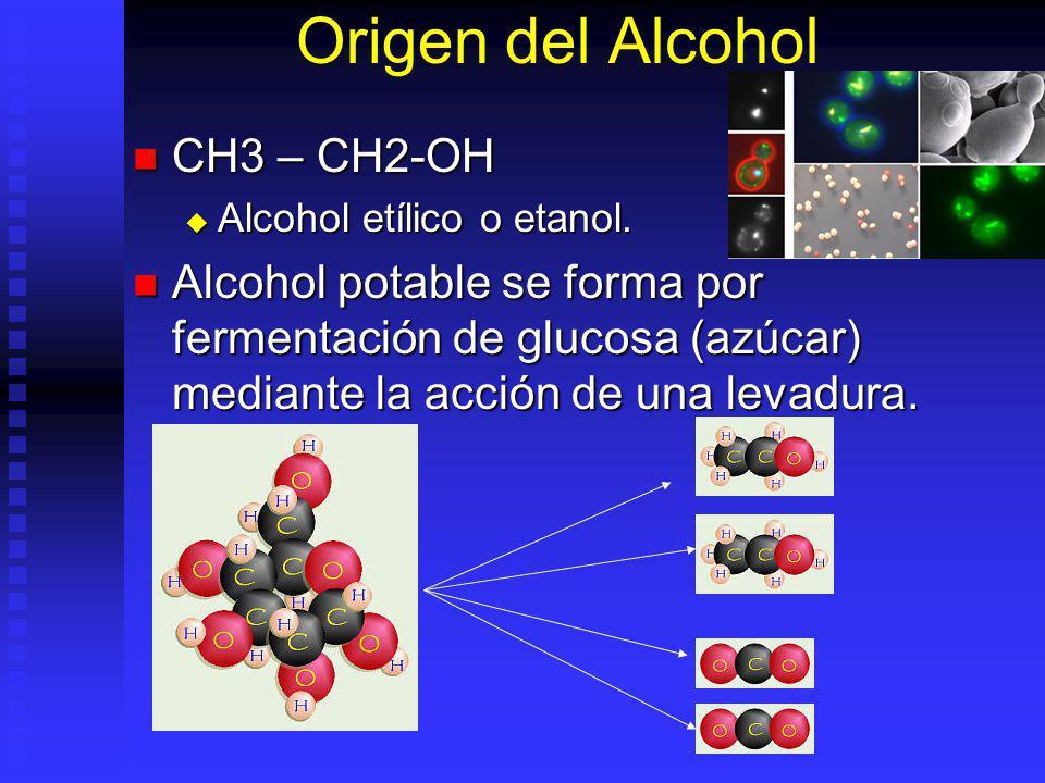 Origen del Alcohol CH3 – CH2-OH