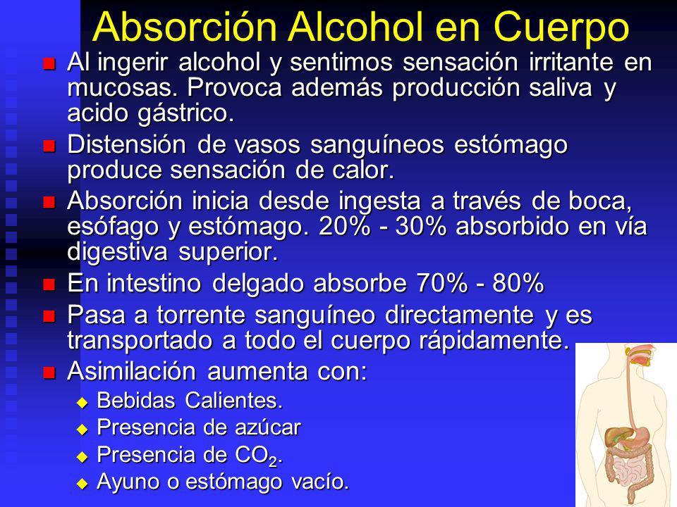 Absorción Alcohol en Cuerpo