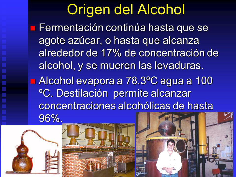 Origen del Alcohol