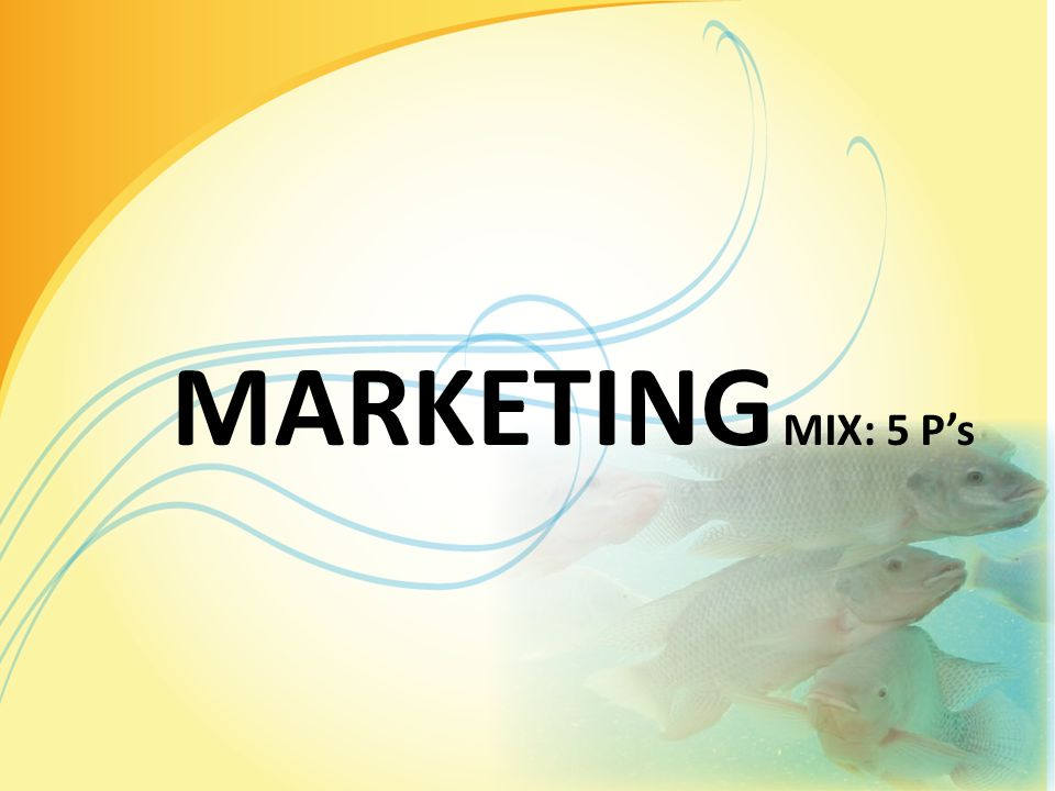 MARKETING MIX: 5 P's