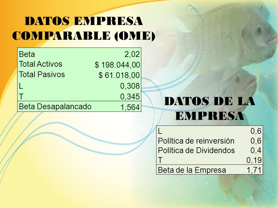 DATOS EMPRESA COMPARABLE (OME)