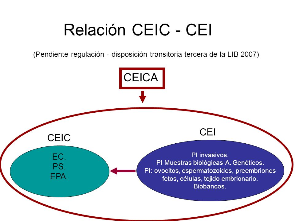 Relación CEIC - CEI CEICA