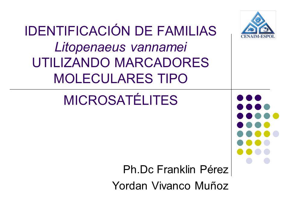 Ph.Dc Franklin Pérez Yordan Vivanco Muñoz