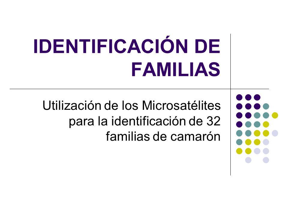 IDENTIFICACIÓN DE FAMILIAS
