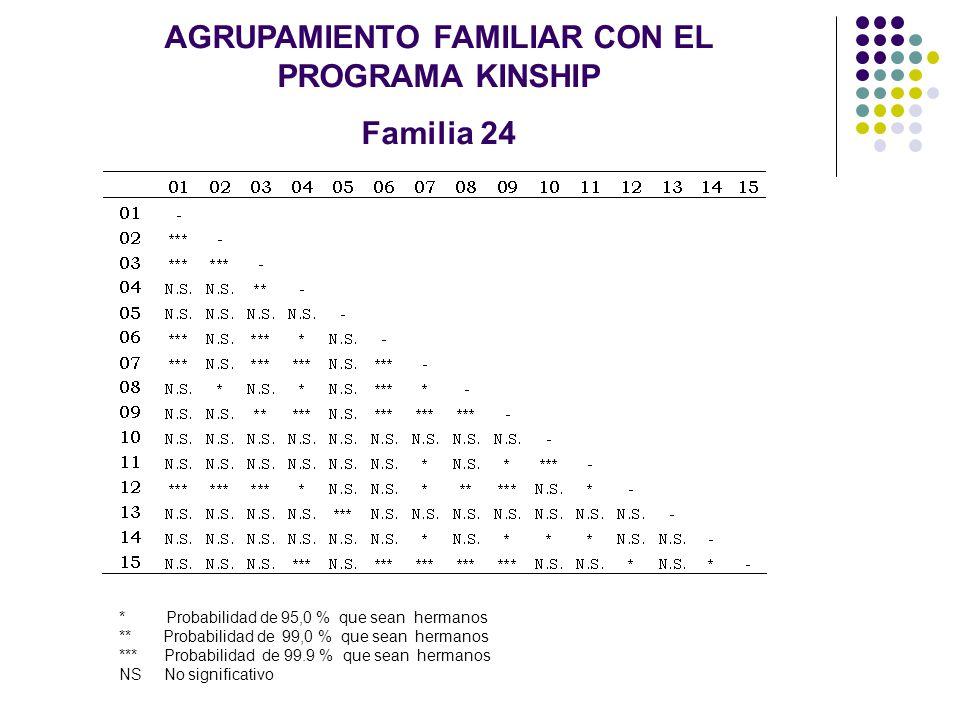 AGRUPAMIENTO FAMILIAR CON EL PROGRAMA KINSHIP