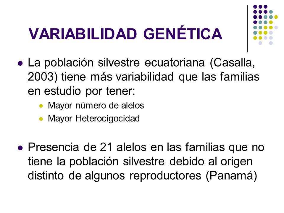 VARIABILIDAD GENÉTICA