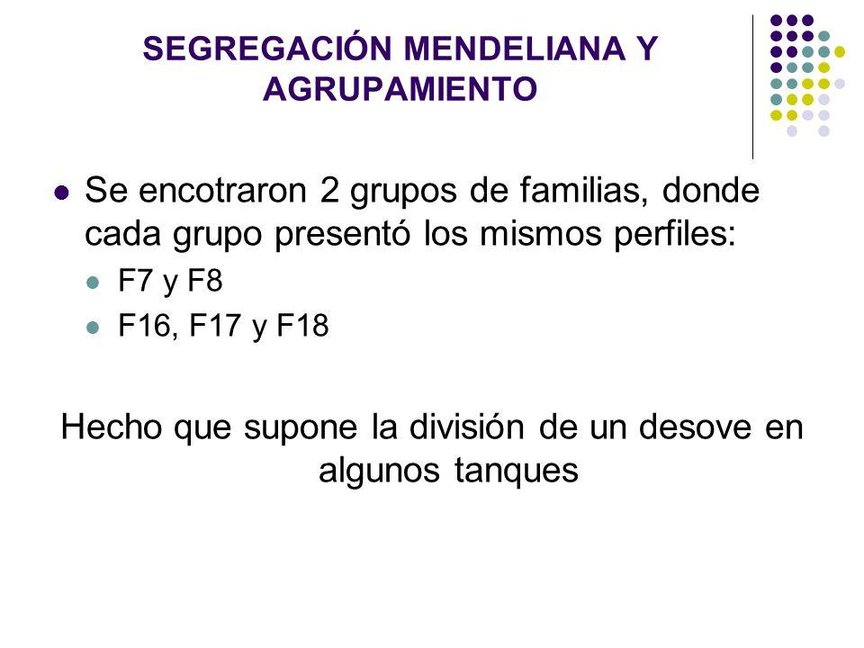 SEGREGACIÓN MENDELIANA Y AGRUPAMIENTO