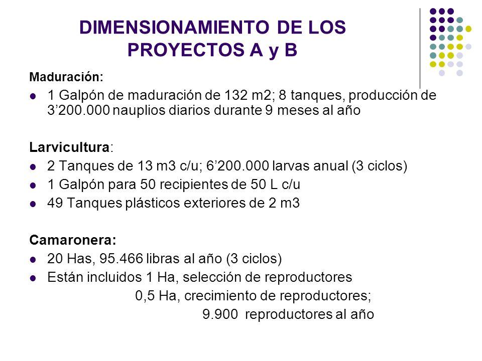 DIMENSIONAMIENTO DE LOS PROYECTOS A y B