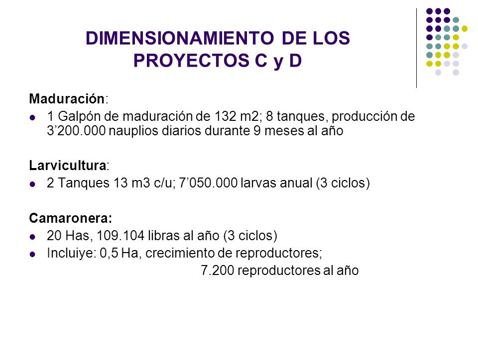 DIMENSIONAMIENTO DE LOS PROYECTOS C y D
