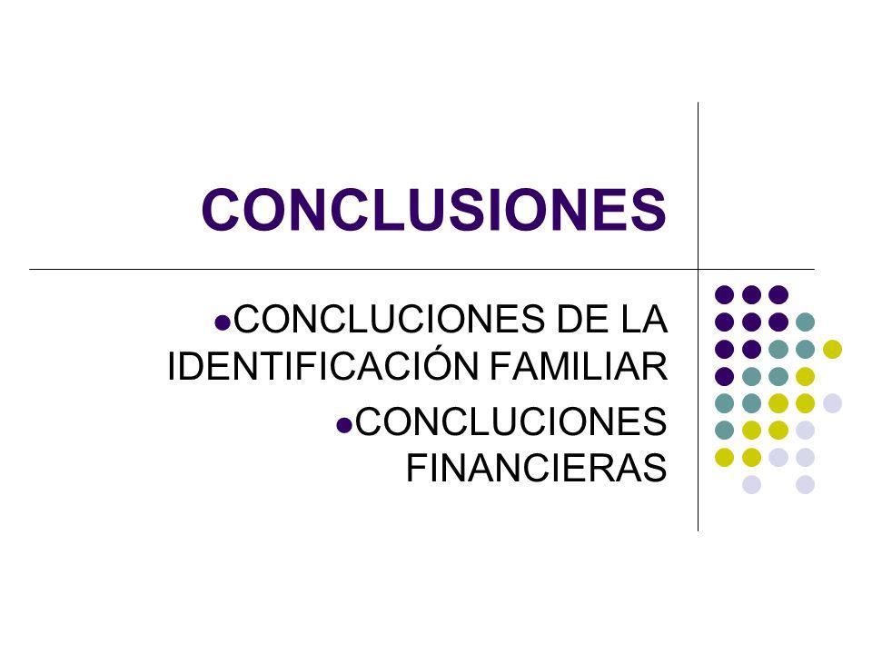 CONCLUCIONES DE LA IDENTIFICACIÓN FAMILIAR CONCLUCIONES FINANCIERAS