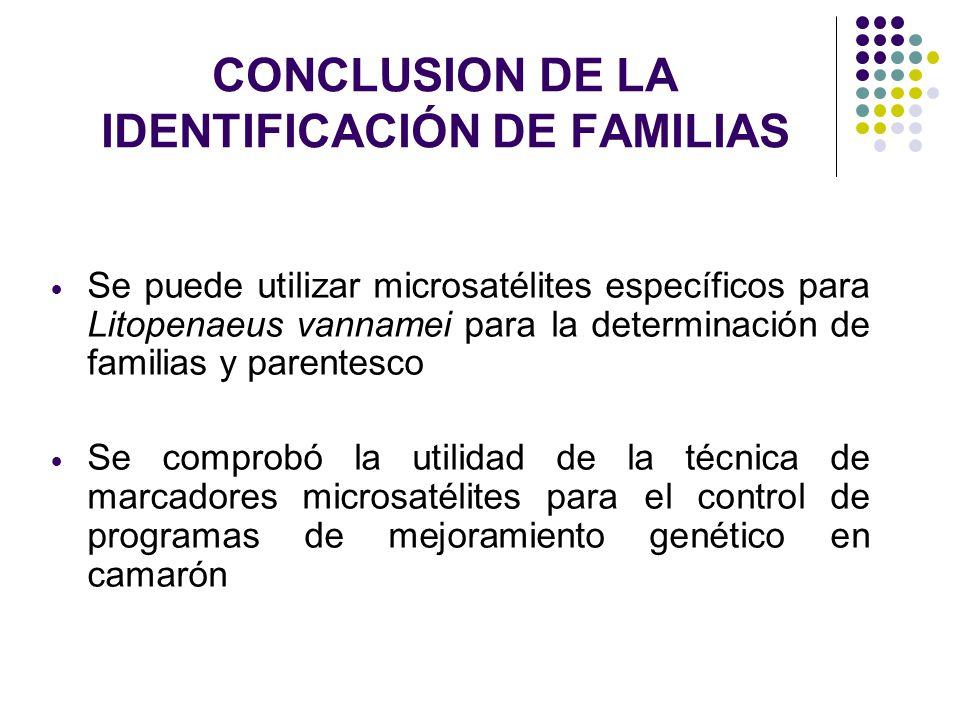 CONCLUSION DE LA IDENTIFICACIÓN DE FAMILIAS