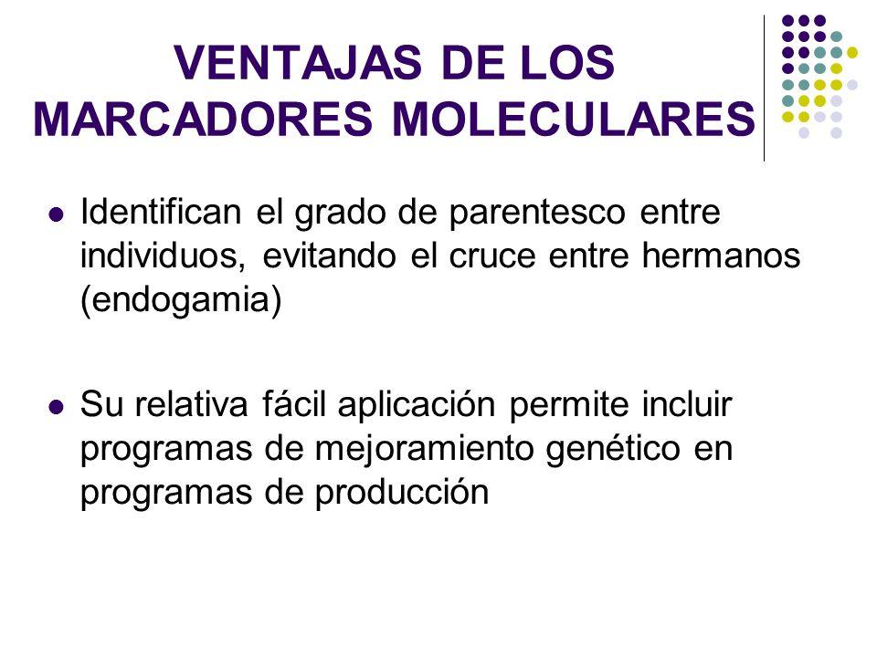 VENTAJAS DE LOS MARCADORES MOLECULARES