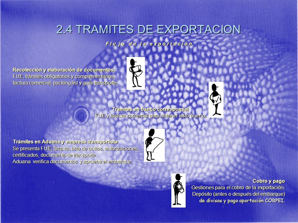 2.4 TRAMITES DE EXPORTACION
