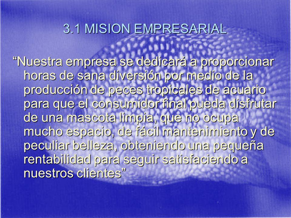 3.1 MISION EMPRESARIAL