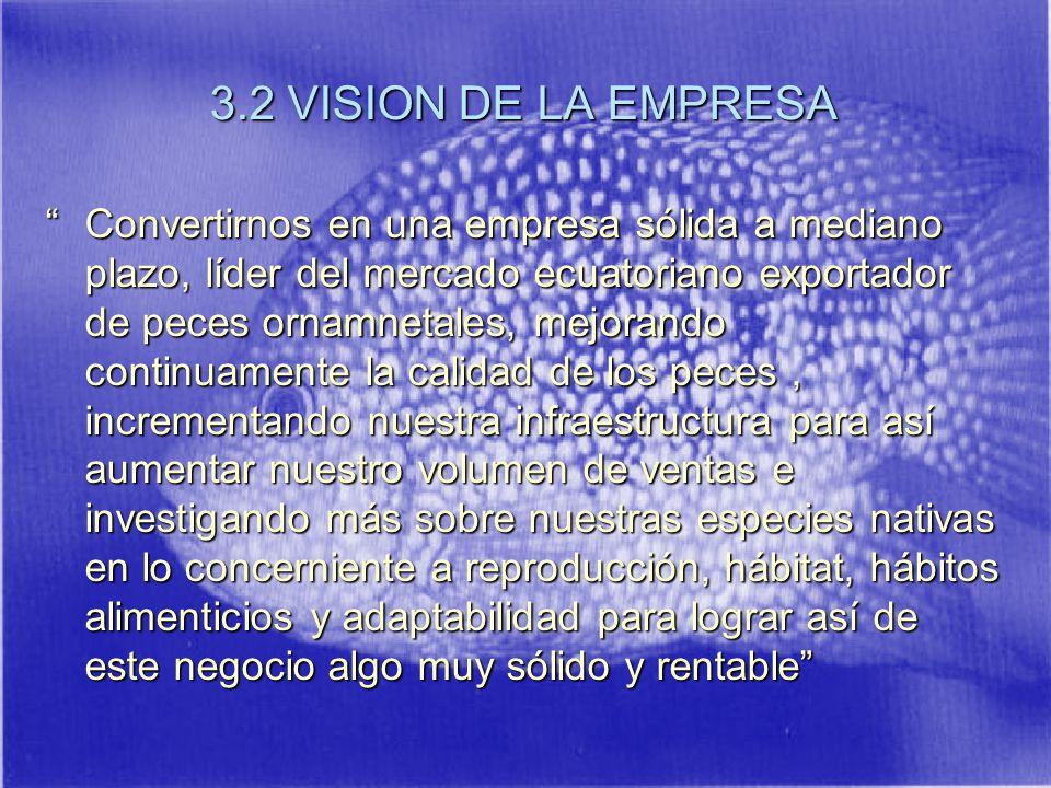 3.2 VISION DE LA EMPRESA