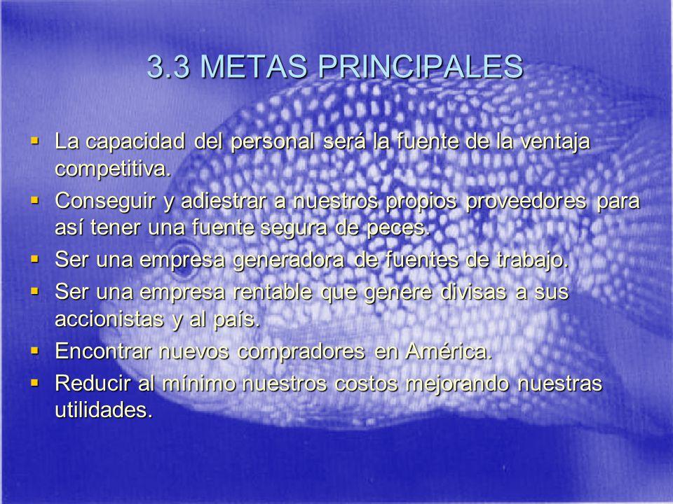 3.3 METAS PRINCIPALES La capacidad del personal será la fuente de la ventaja competitiva.