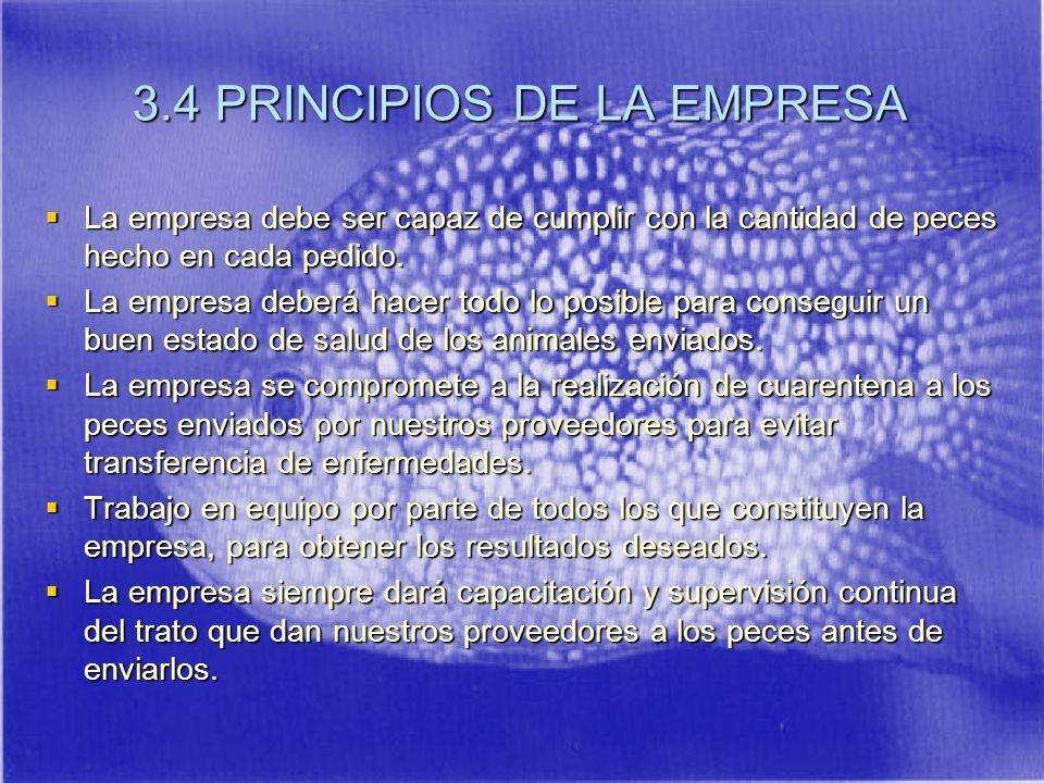 3.4 PRINCIPIOS DE LA EMPRESA