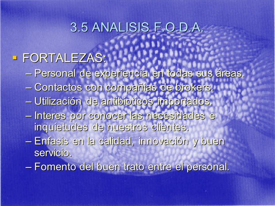 3.5 ANALISIS F.O.D.A. FORTALEZAS: