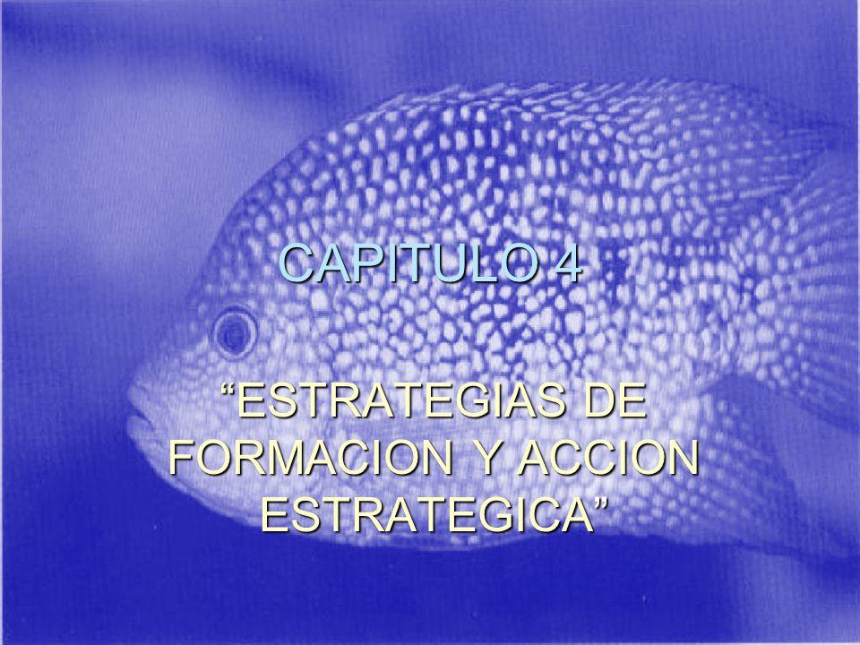 ESTRATEGIAS DE FORMACION Y ACCION ESTRATEGICA