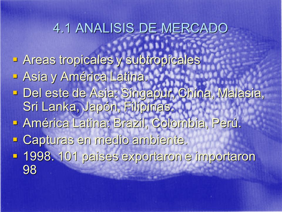4.1 ANALISIS DE MERCADO Areas tropicales y subtropicales