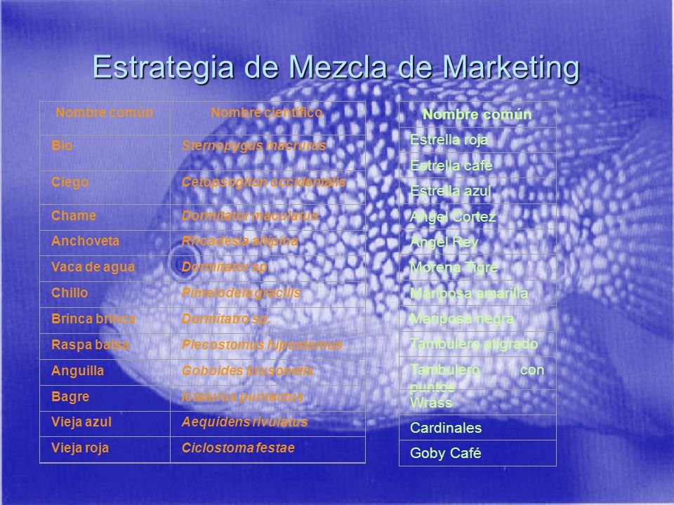 Estrategia de Mezcla de Marketing