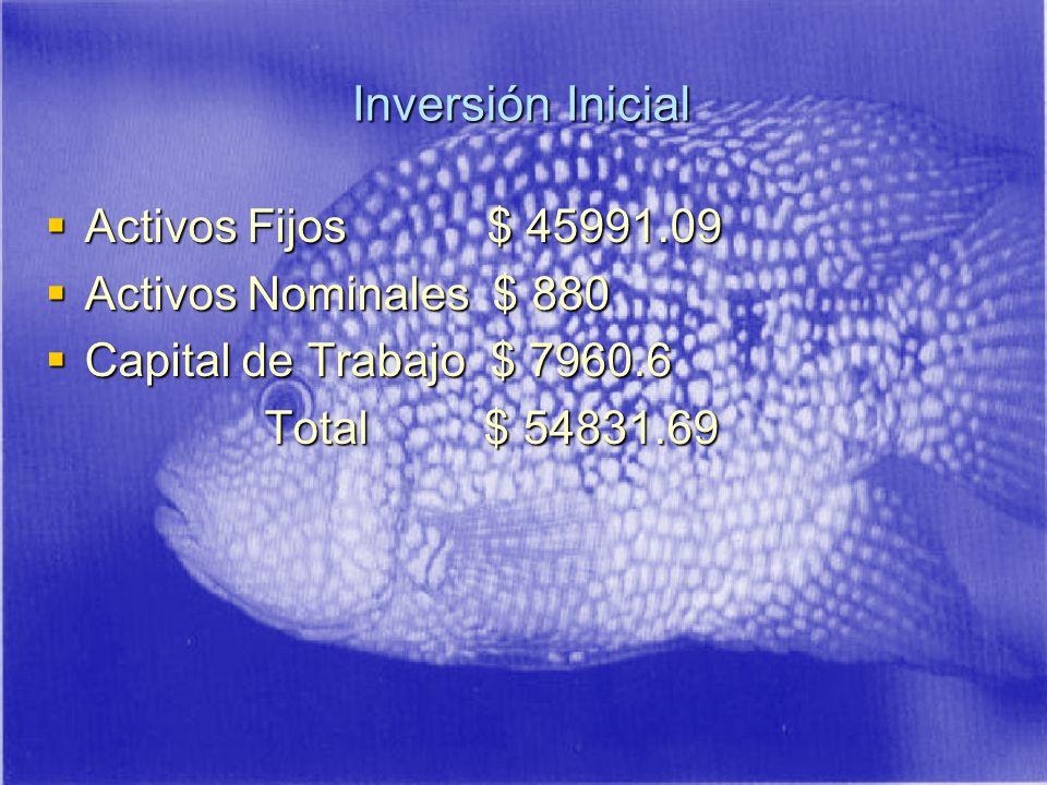 Inversión Inicial Activos Fijos $ 45991.09 Activos Nominales $ 880