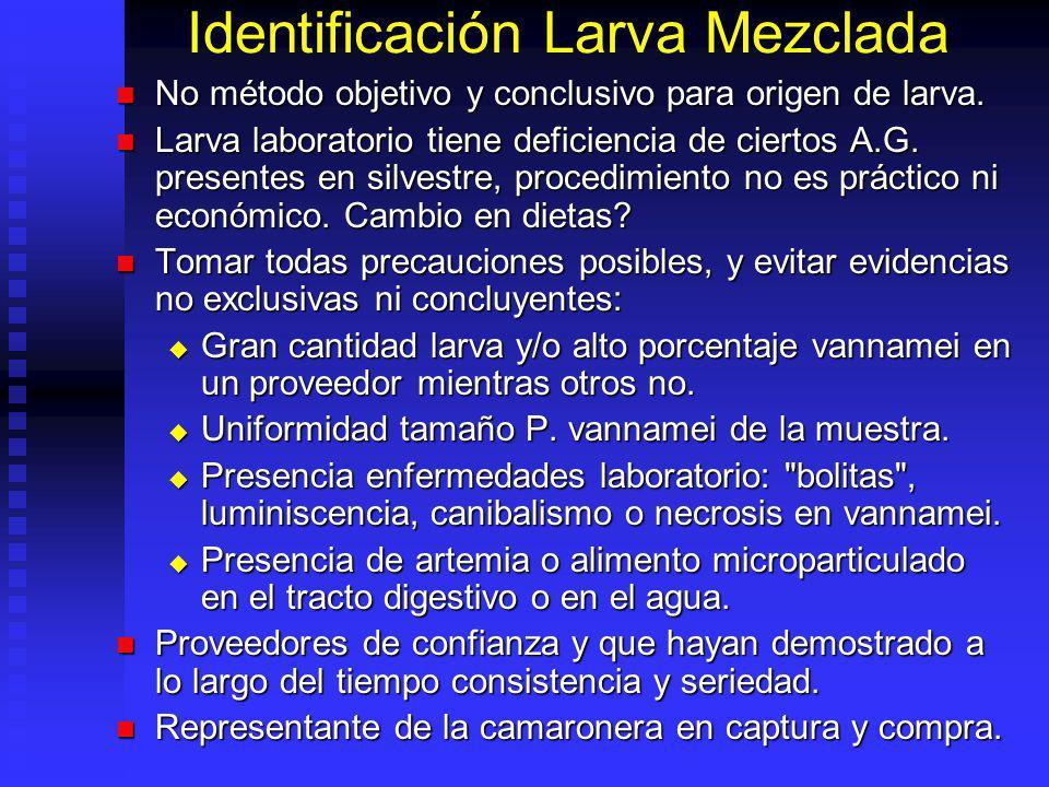 Identificación Larva Mezclada