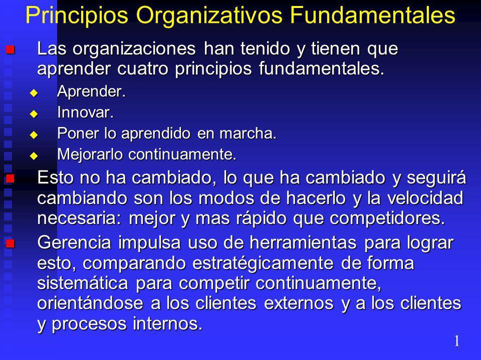 Principios Organizativos Fundamentales