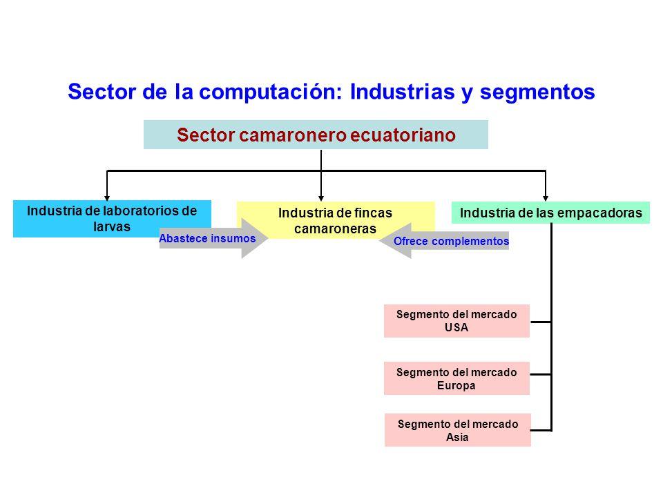 Sector de la computación: Industrias y segmentos