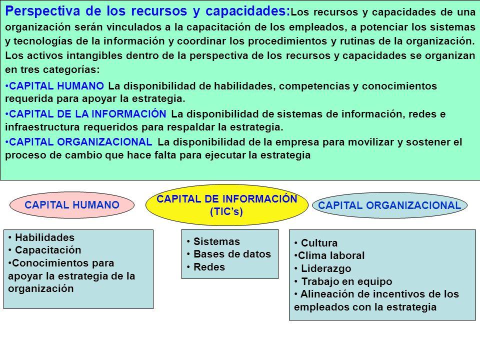 CAPITAL ORGANIZACIONAL CAPITAL DE INFORMACIÓN