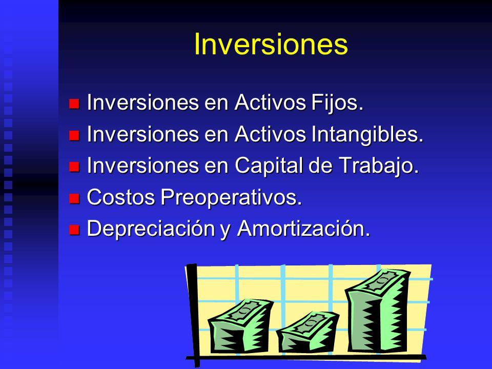 Inversiones Inversiones en Activos Fijos.