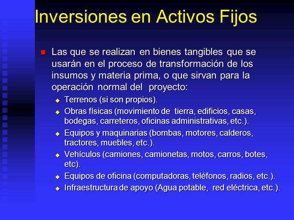 Inversiones en Activos Fijos