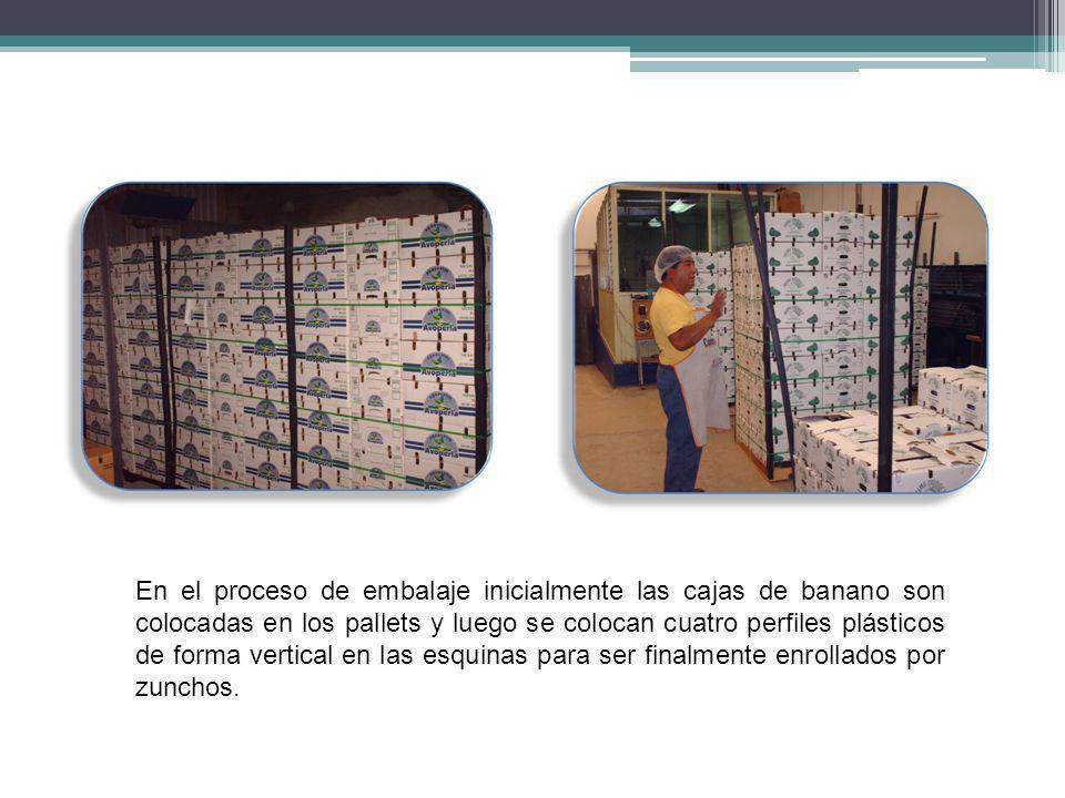 En el proceso de embalaje inicialmente las cajas de banano son colocadas en los pallets y luego se colocan cuatro perfiles plásticos de forma vertical en las esquinas para ser finalmente enrollados por zunchos.