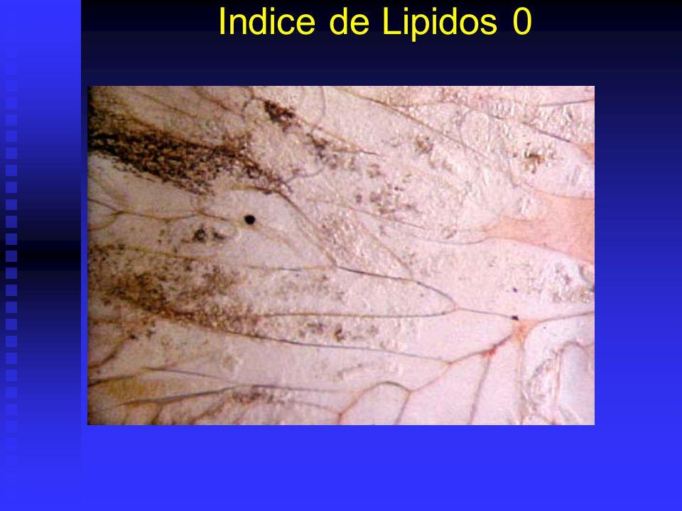 Indice de Lipidos 0