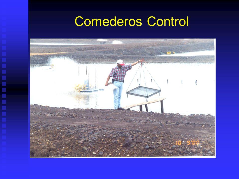 Comederos Control