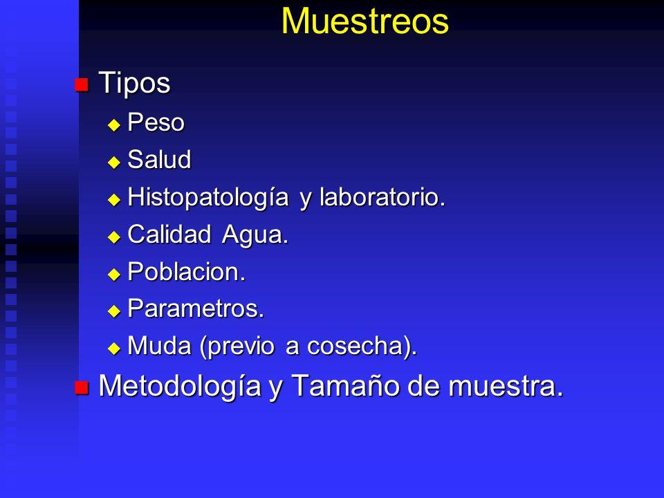 Muestreos Tipos Metodología y Tamaño de muestra. Peso Salud