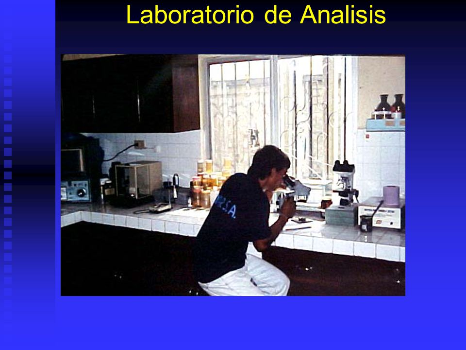 Laboratorio de Analisis