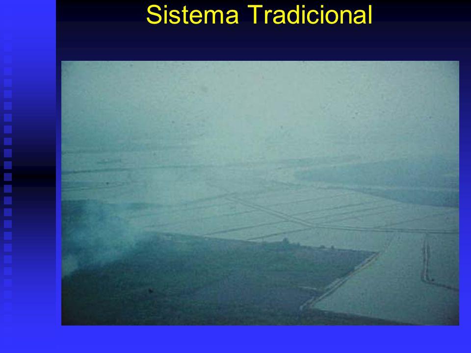 Sistema Tradicional