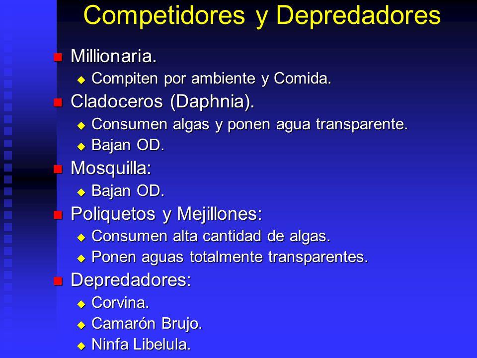 Competidores y Depredadores