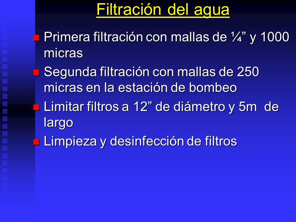 Filtración del agua Primera filtración con mallas de ¼ y 1000 micras